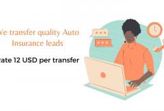 auto-insurance-live-transfer